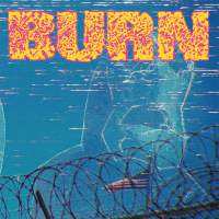 Burn - ... From The Ashes