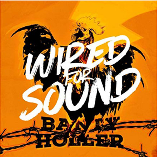 Banty-Holler-Wired-For-Sound