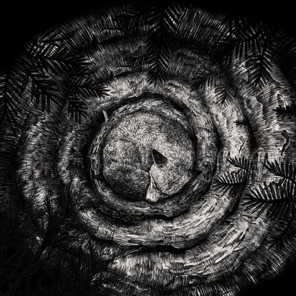 Forhist album cover